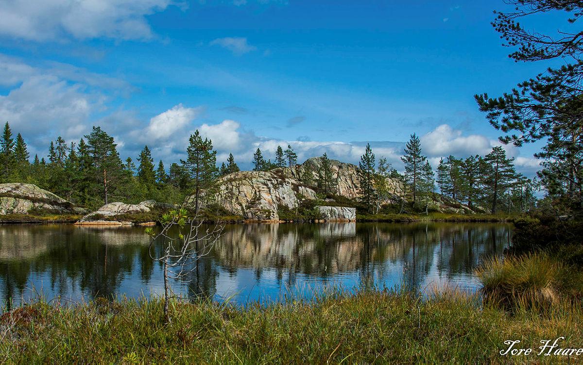 Turgruppa Ut på tur Eiker til Surtvarden og Bergtjern