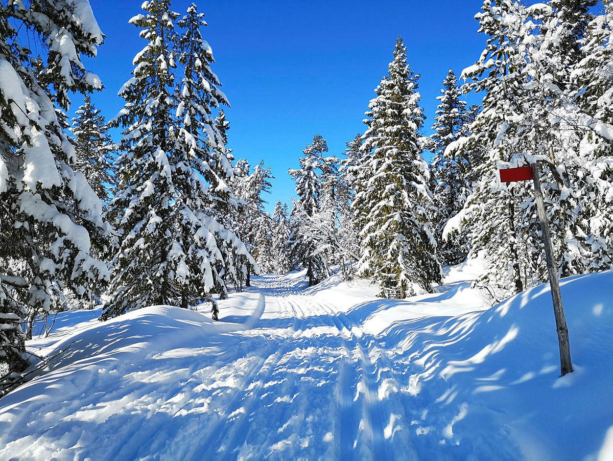 Turposter på ski