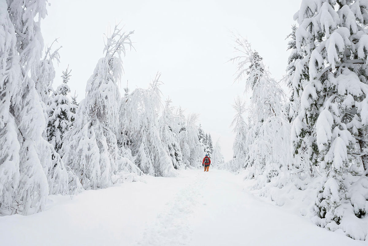 Skogstur i nydelig vinterlandskap.