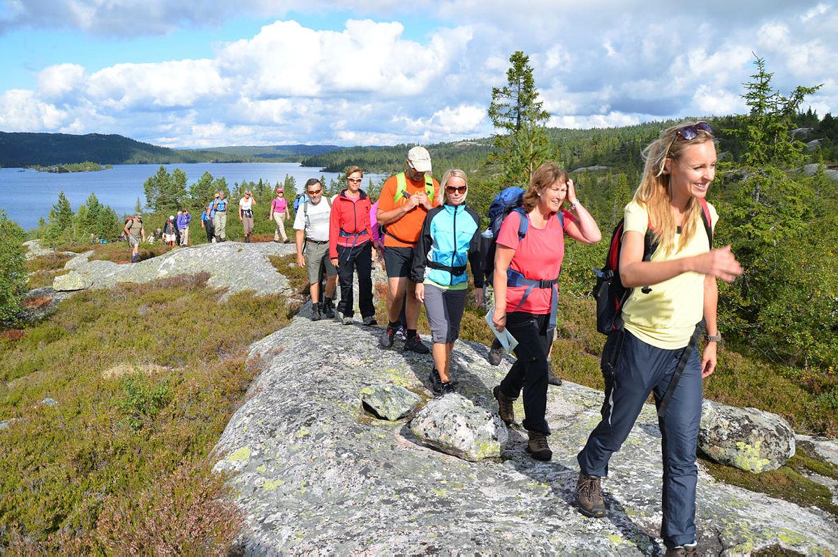 Heituren i kommunegrensetraktene mellom Drangedal og Nissedal går på nytt søndag 28. august på Heigeitilløypa, og Gautefall turlag inviterer til guidet tur. Husk påmelding innen fredag 26. august kl. 11.00 på grunn av busstransort.