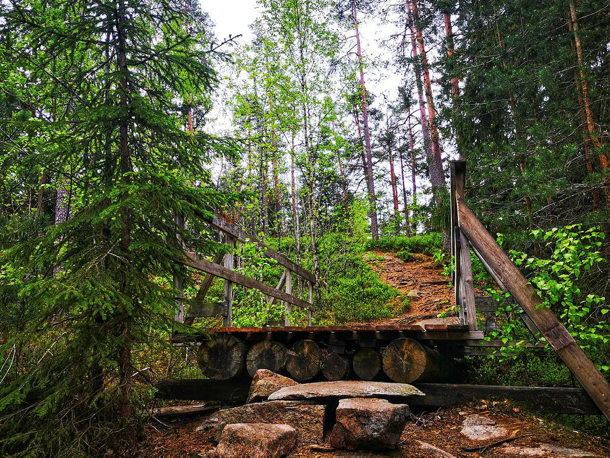 Skogsdrift ved Solum - følg alternativ sti fra Voldsveien
