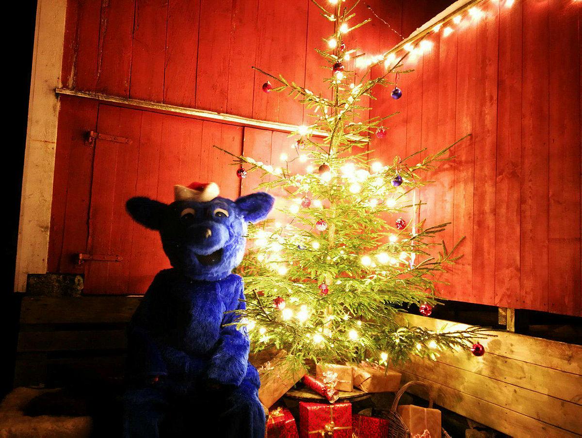 Turbo delte ut pakkar på Juletur i Oppedal