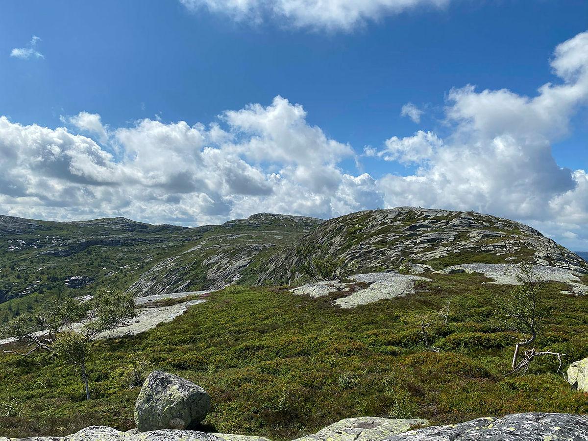 Utsikt inn mot toppen av Førheinutane.