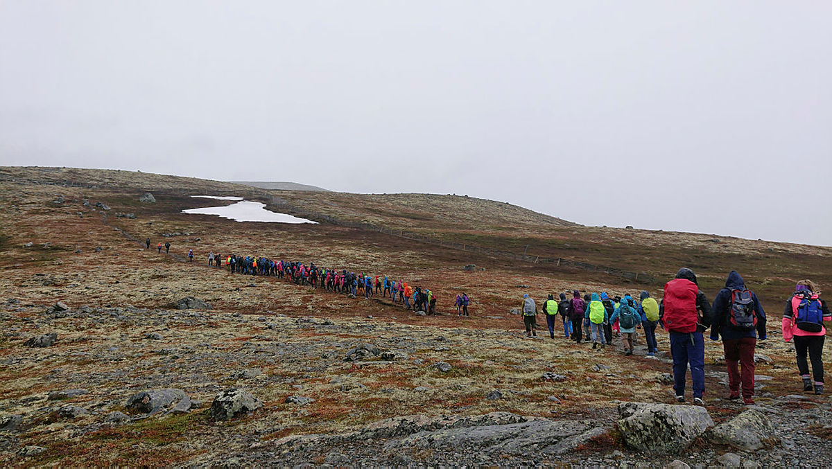 På tur opp til Trollhøe.