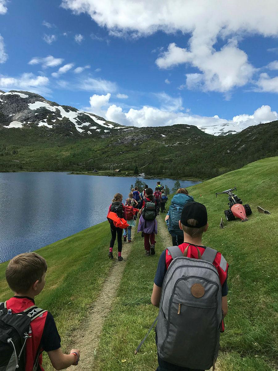 Fjelleir 2, 2020, i Bergsdalen