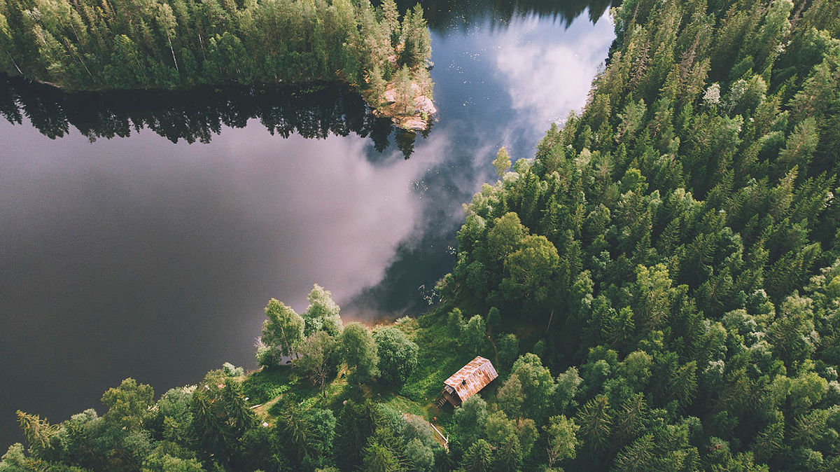 Sikre deg en overnattingstur til Røyrivannskoia i Østmarka - fra 3. november kan du booke!
