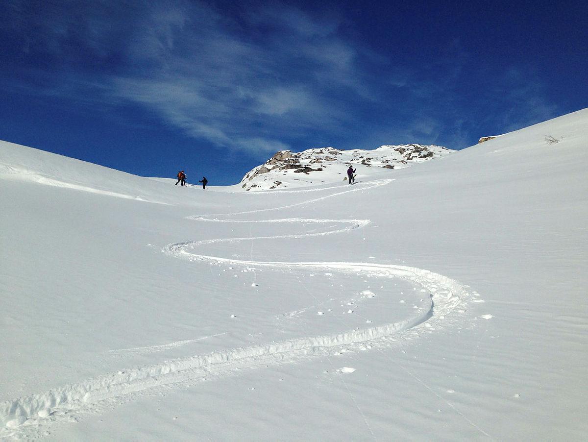Flott skiterreng i ormådet