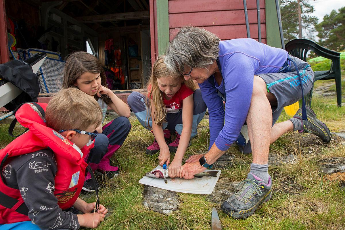 Skjærgårdsleir med Barnas Turlag på Erleholmen, Tysnes, juli 2020.
