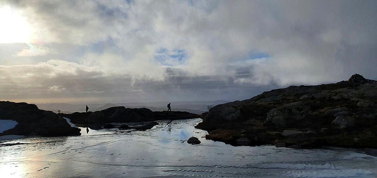 Vinnerbilde fotokonkurranse Bergenstrimmen vinter 2020/21 #bergenstrimmensentrum