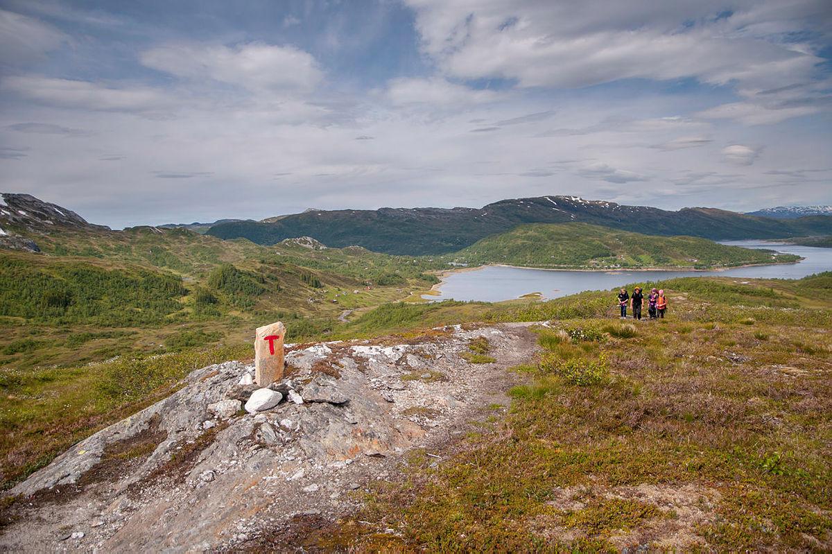 Fjelleir 1 Bergsdalen sommeren 2017