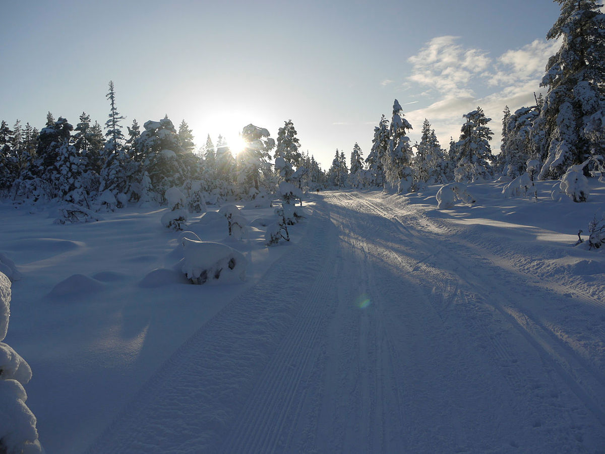 Skitur i Finnemarka