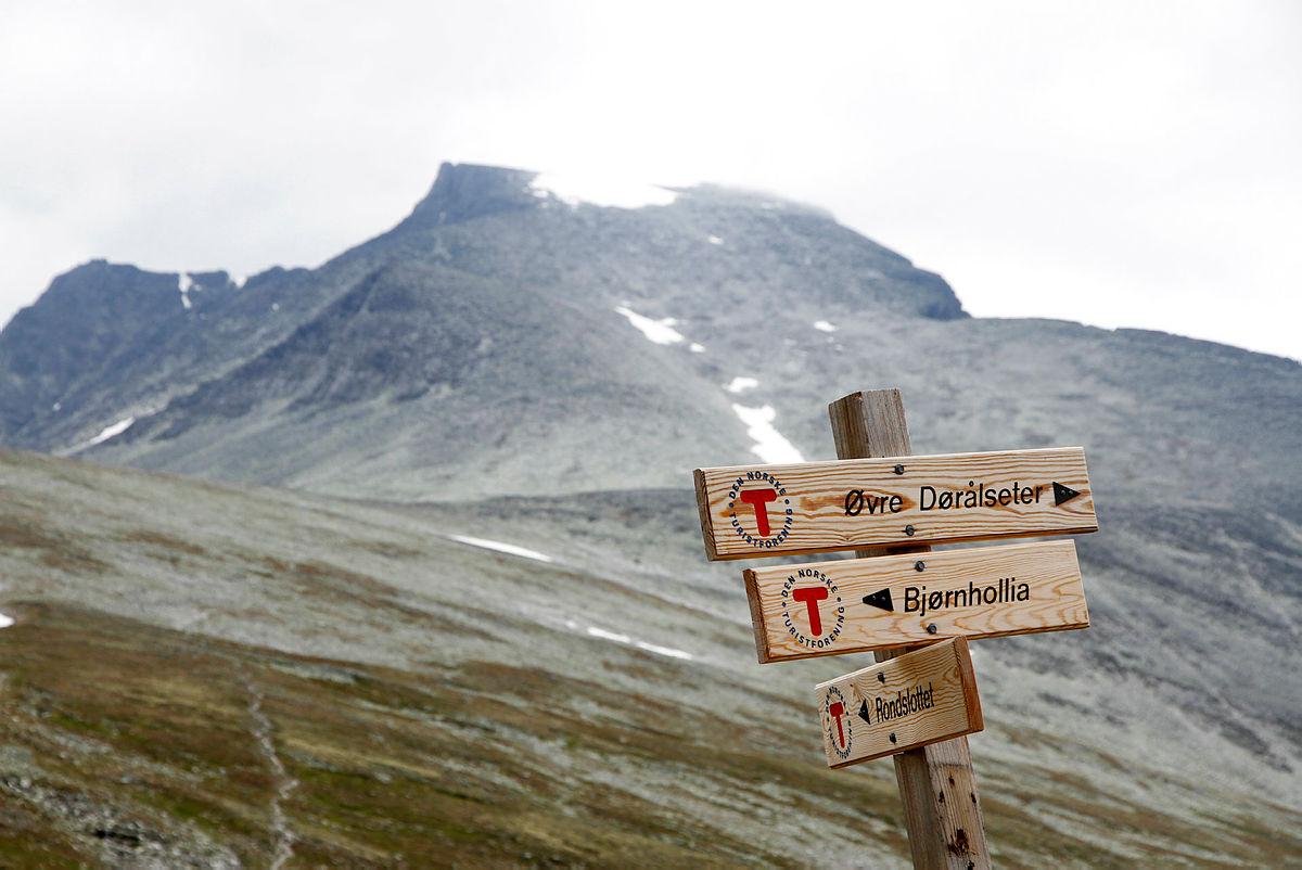 Rondane juli 2016 - Rondvassbu - Langglupdalen - Bjørnhollia - Illmanndalen