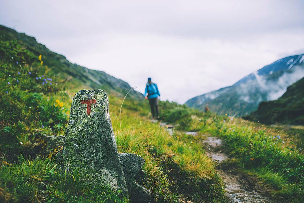 Ledige tillitsverv i DNT, DNT ung og DNT fjellsport