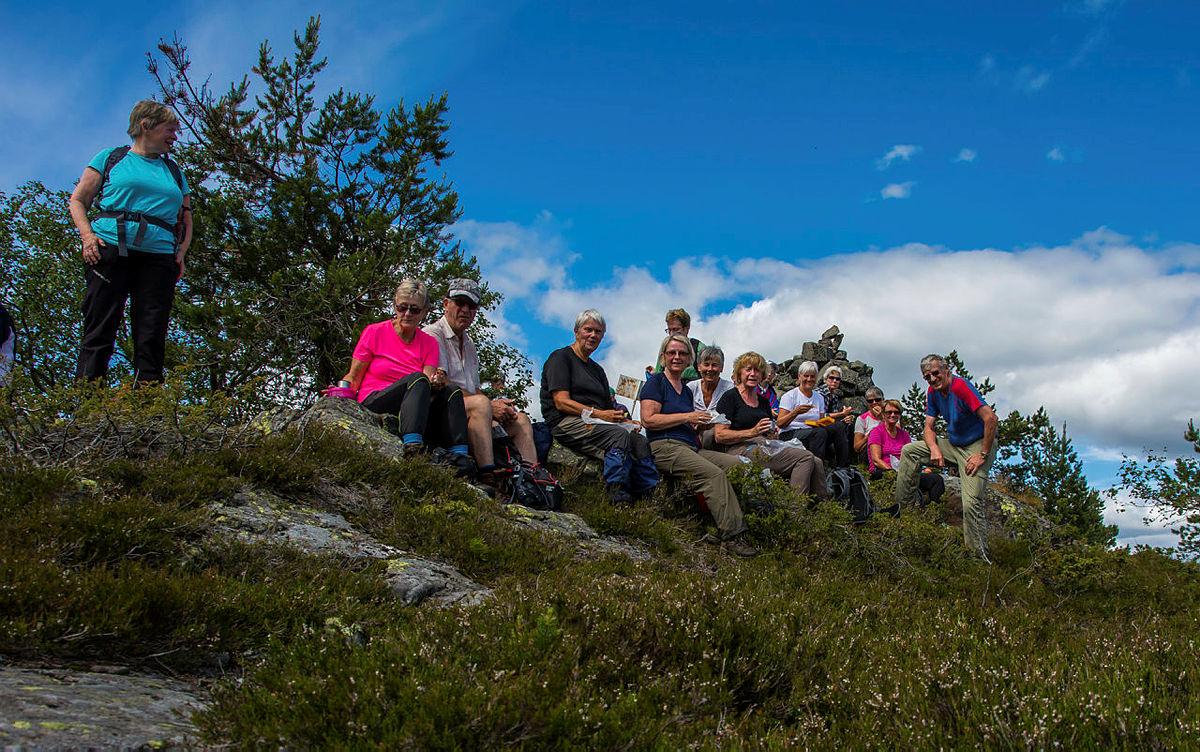 Turgruppa Ut på tur Eiker på Holtefjell med Myrehogget