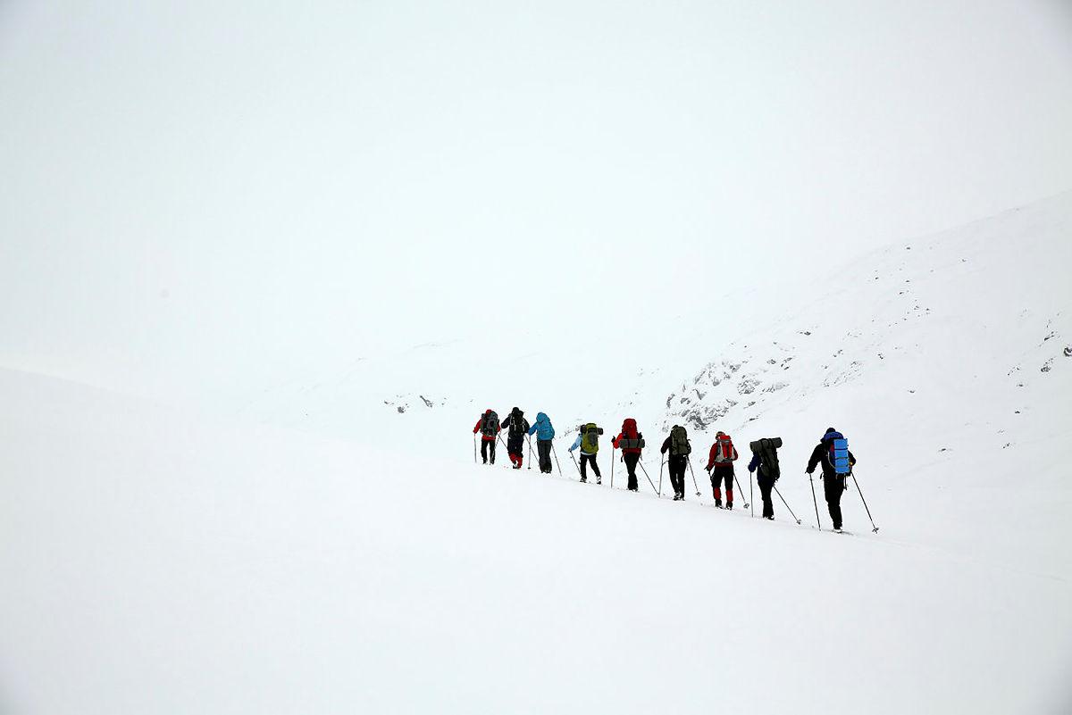 Vinterturleder