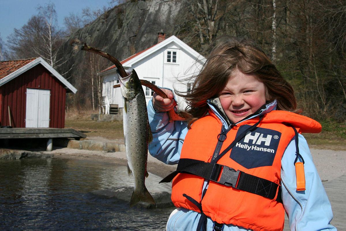Fiske i Sildevika