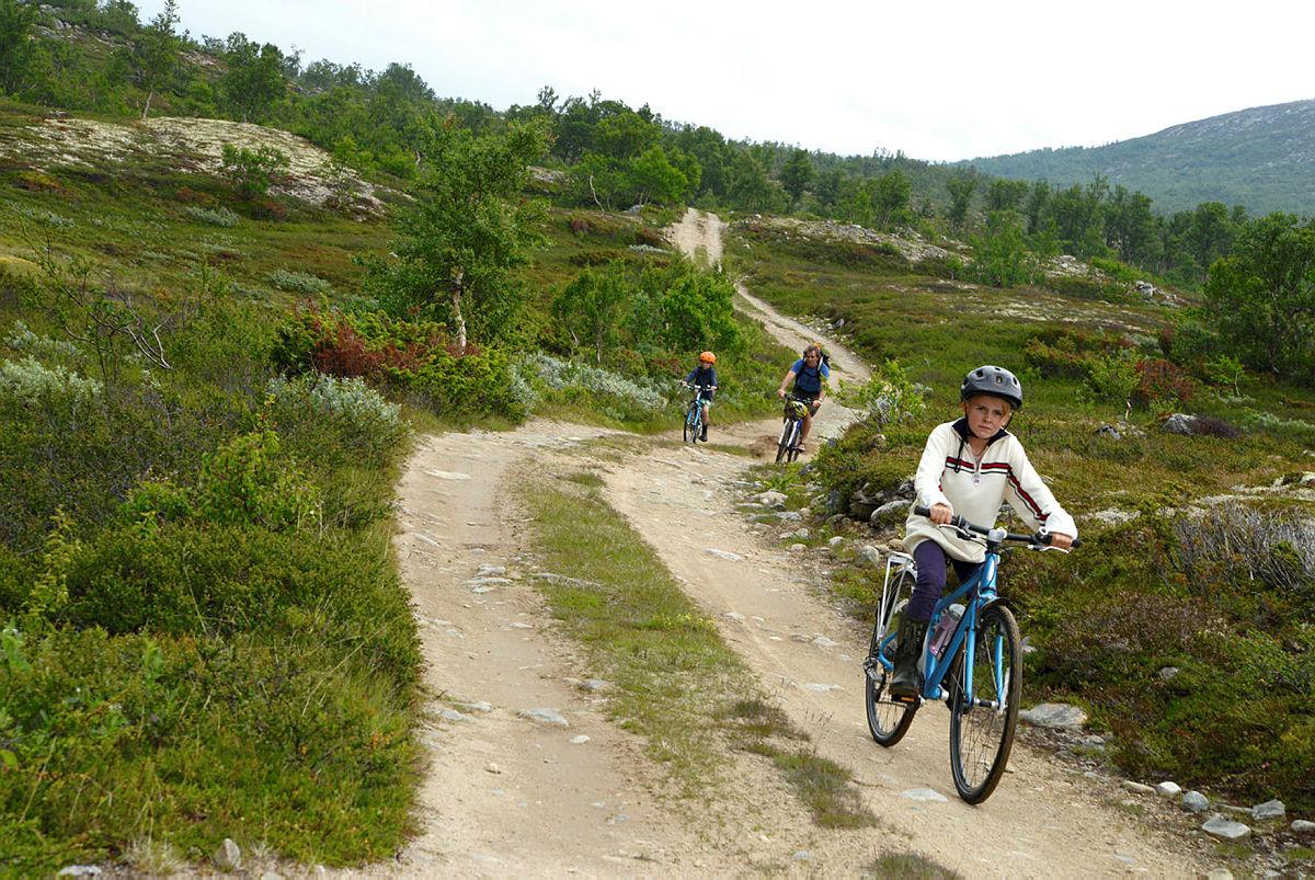 På sykkel fra Dindalshytta til Gammelsetra, langs kjerreveien i Dindalen.