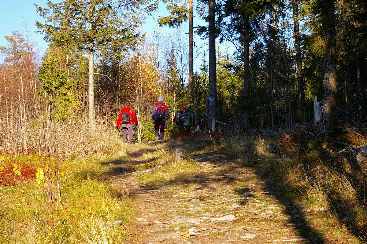 Vil du være med og utvikle Eidsvoll Turlag?