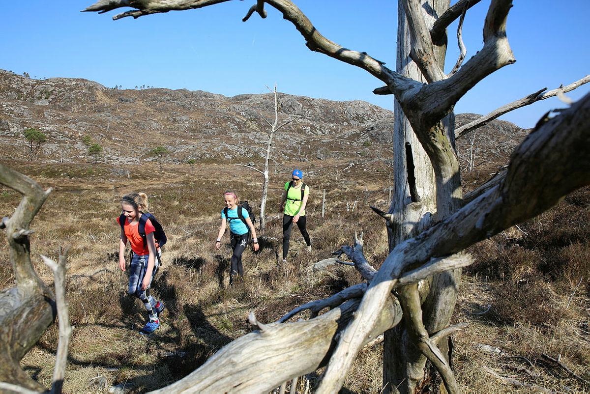 5- og 7-fjellsturen på Bømlo 8. mai 2016. Nærmere 300 deltagere. Femte året på rad Bømlo Turlag arrangerer 5- og 7-fjellsturen. Ca 30 frivillige var i sving. Fantastisk vær og gode turforhold.