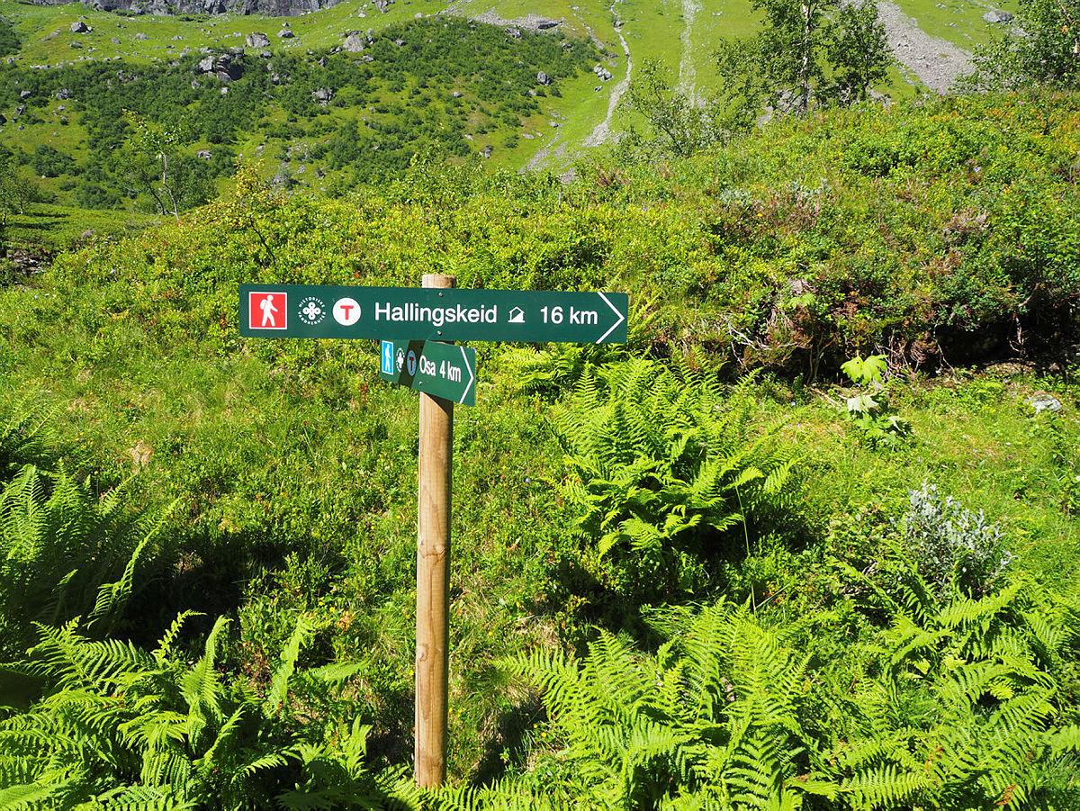 bilder fra åpningen av Hallingskeidvegen fra Osa - Historisk vandrerute