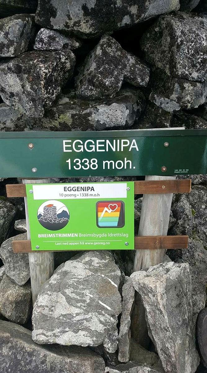 Eggenipa ned YNT