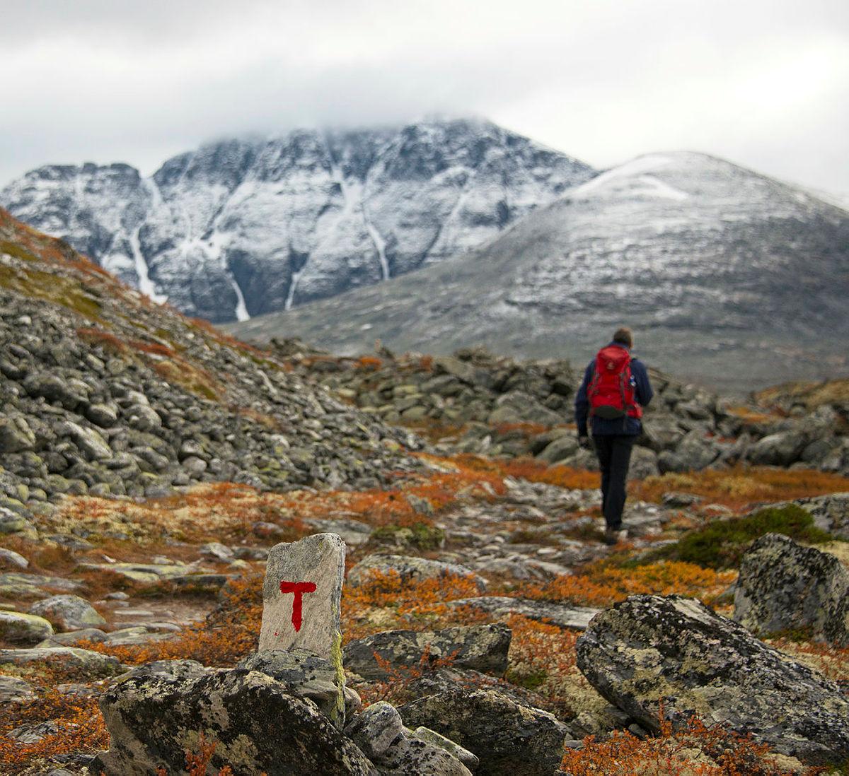 På T-merket sti i Rondane.