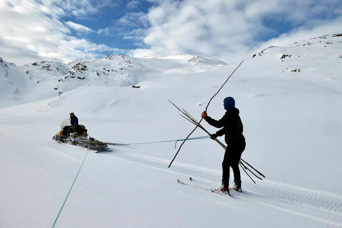 Kvistede ruter i vinterfjellet