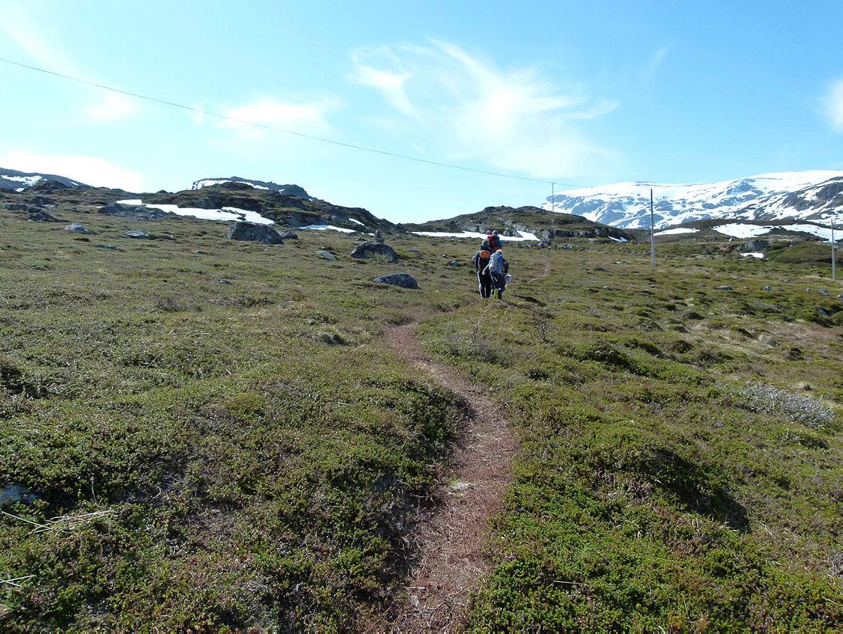 Fra Hønseby til Storvannet på Seiland