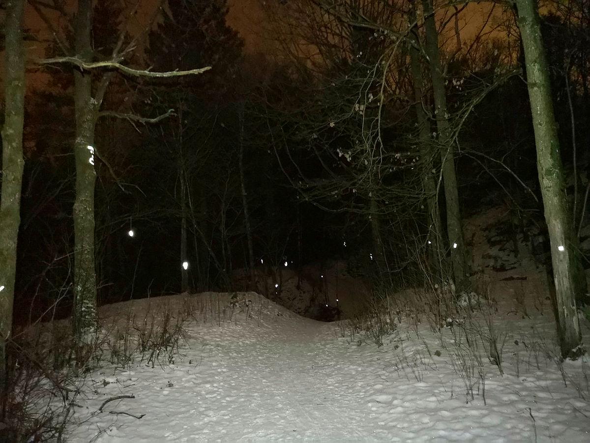 Illustrasjonsfoto fra refleksløype i Porsgrunn.
