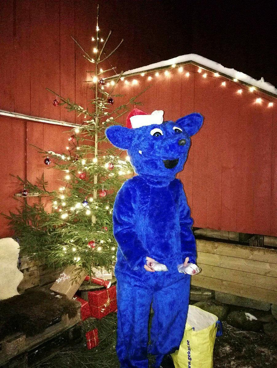 Juletur til Oppedal