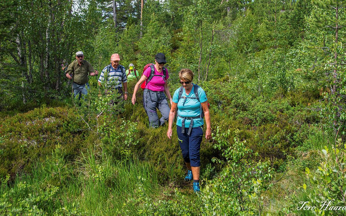 Turgruppa Ut på tur Eiker