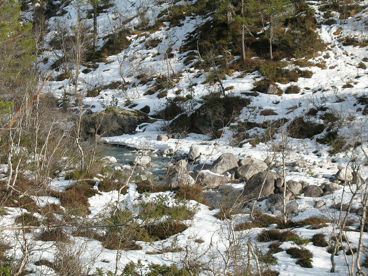 Vårløysing i Øvsthusdalen, 28.02.2021.