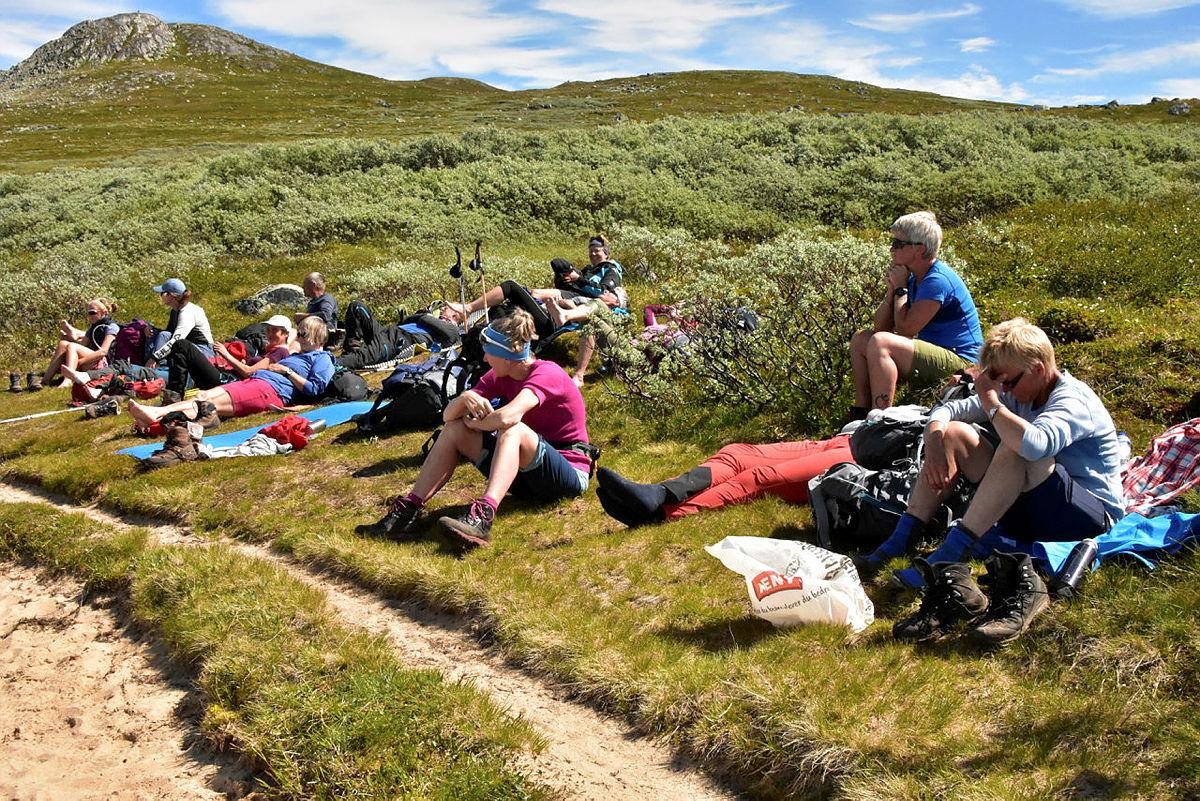 Tur på Hardangervidda 2020. Skien og Gautefall Turlag