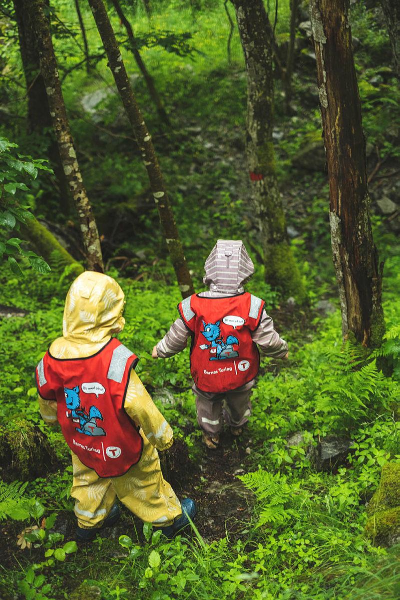 Utforsking i skogen