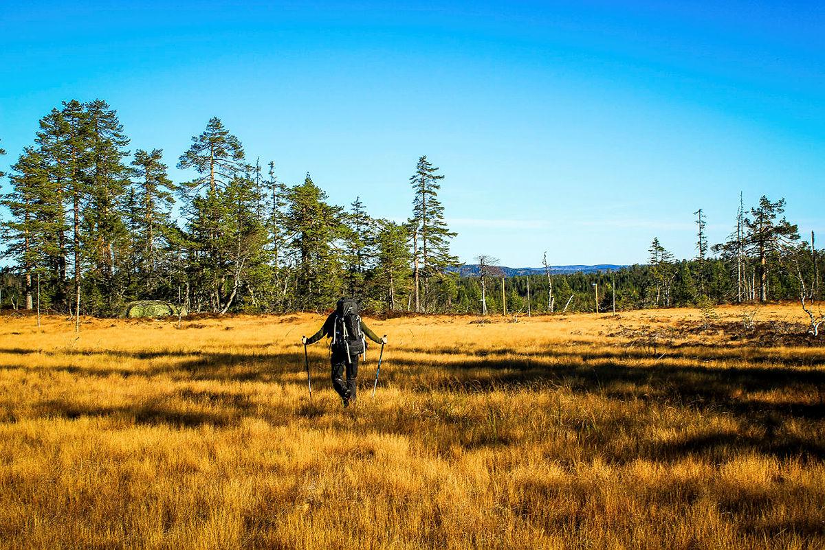 Nå skrotes forslaget om vindkraft i grenseområdene mellom Vestfold, Telemark og Buskerud.