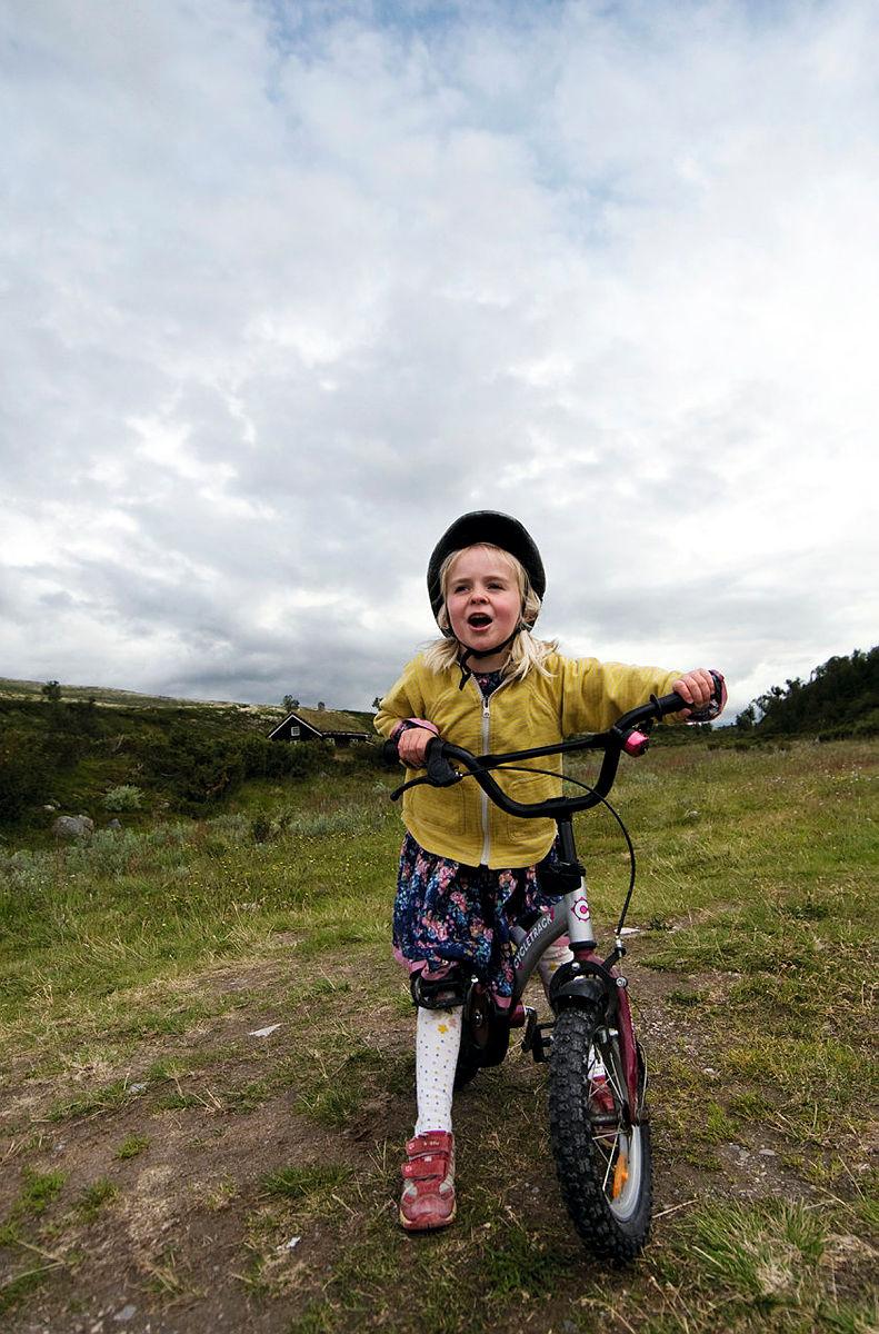 Med sykkel til fjells