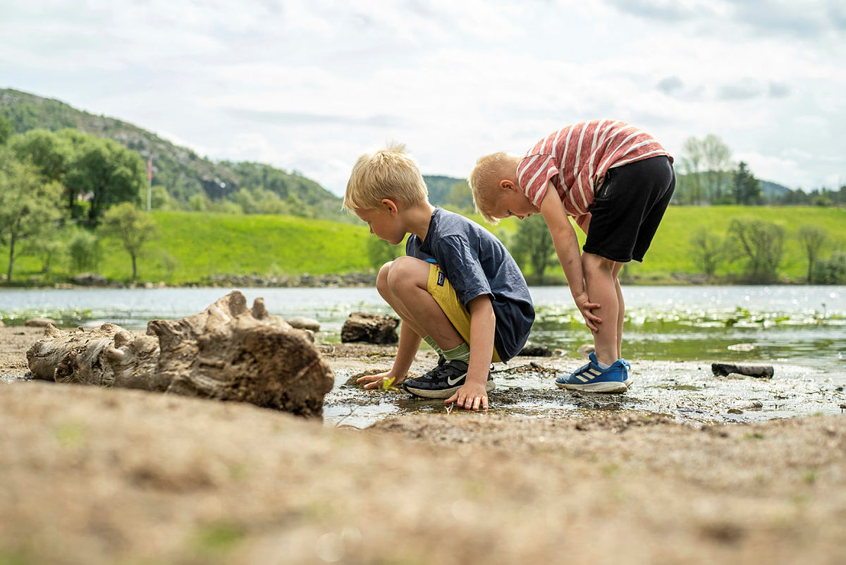 La barna få leke i naturens lekeland.