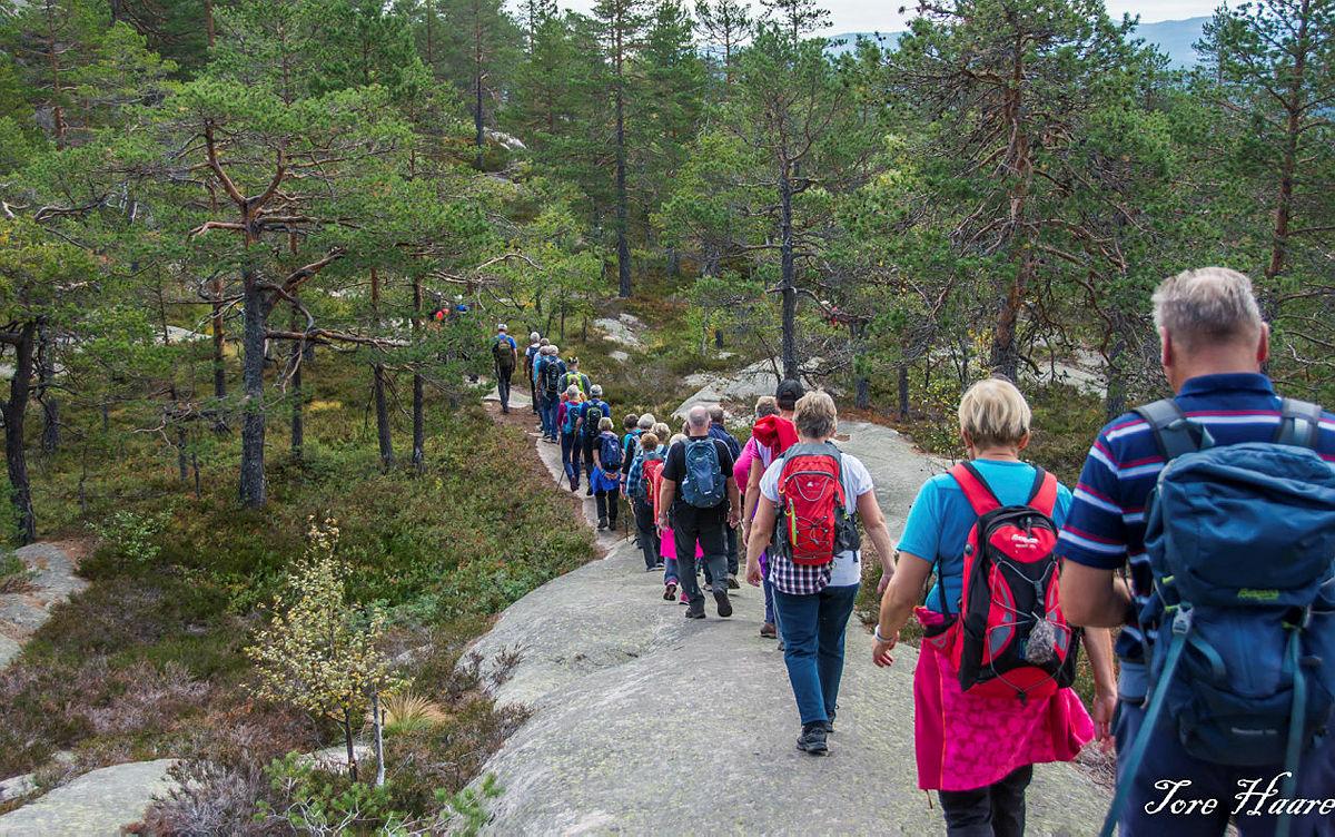 Turgruppa Ut på tur Eiker på tur til Lokkeråsen og Solbergvarden i Nedre Eiker