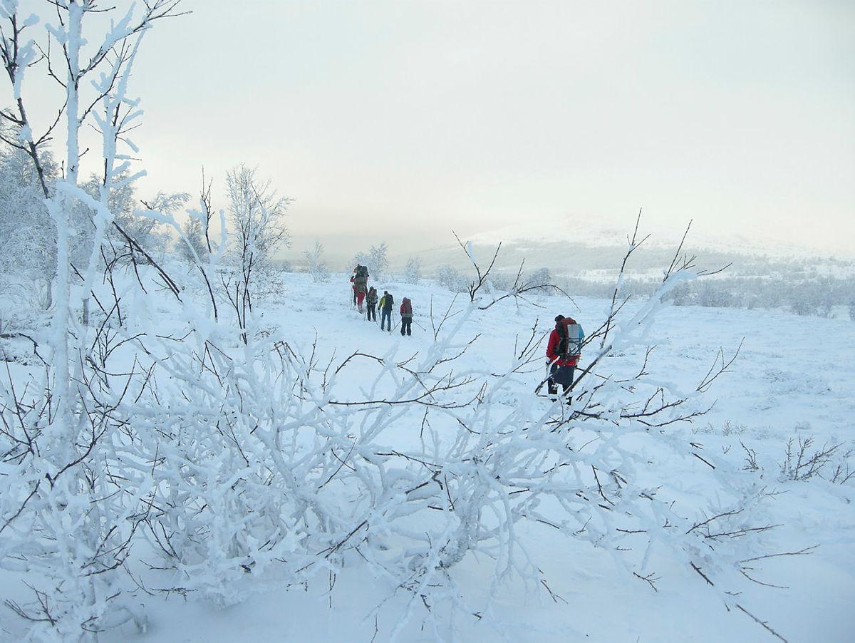 Tips: Fire februarturer på fjellet