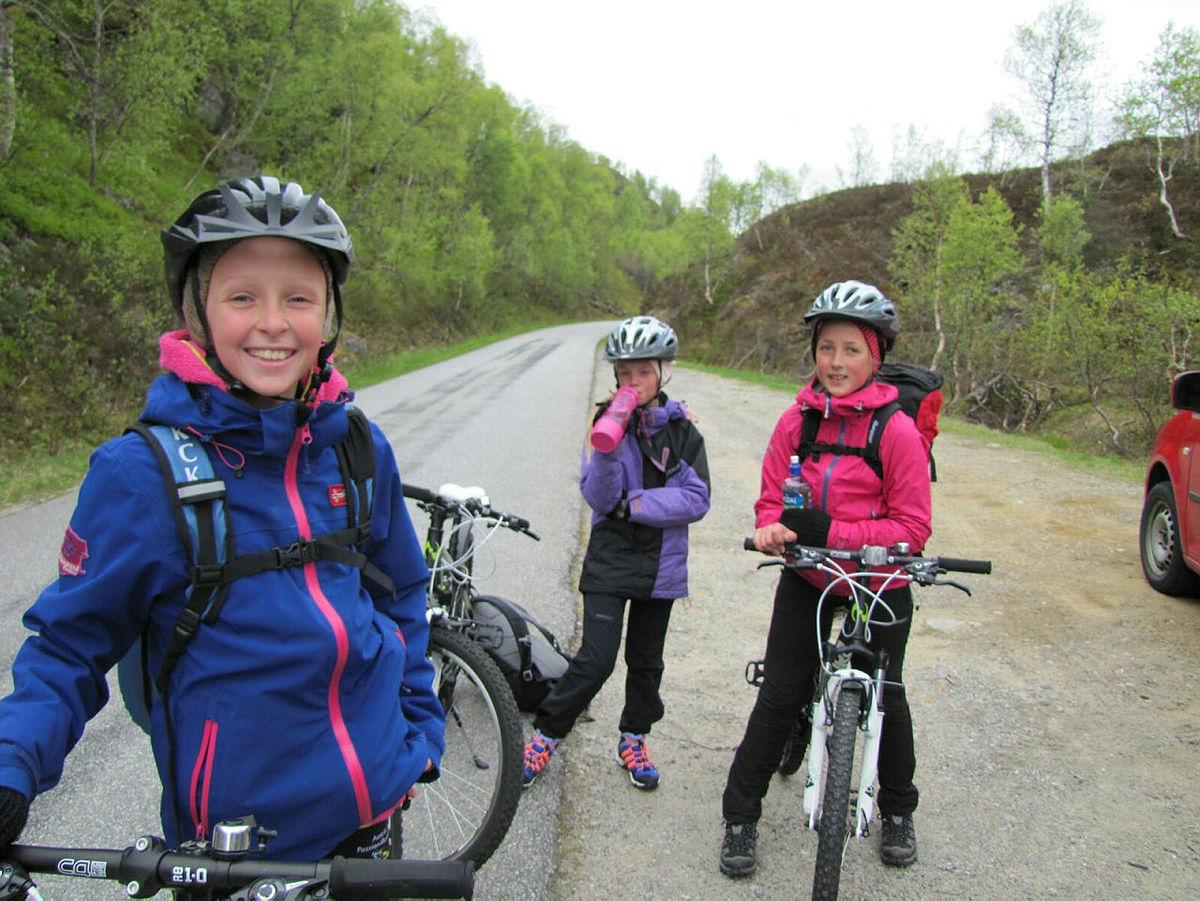 Sykkeltur til Grautheller eller Taumevatn er en kjekk måte å komme seg inn Flatstøldalen og frem til der hvor stien til hyttene starter.