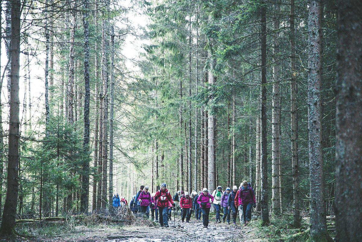 Grønnere turer i Oslo