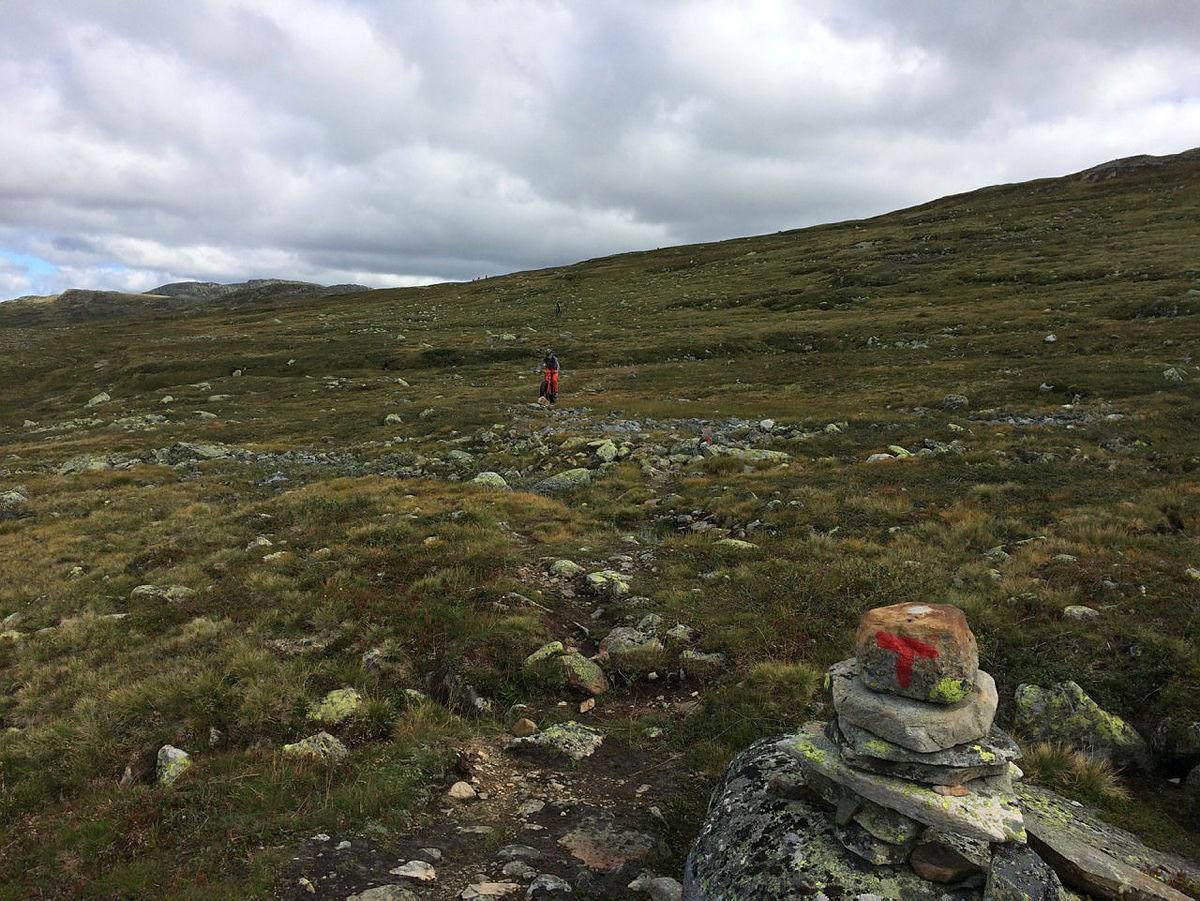 DNT Sør fatbike tur fra Hovden via Tjørnbrotbu til Geiskelid