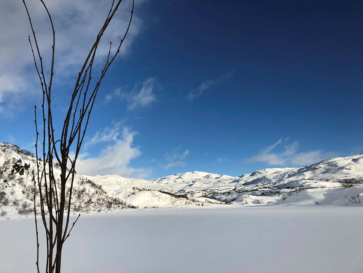 De første kvilsløypene er klar, og nå kan du følge kvisten fra hytte-til-hytte nord for Ådneram