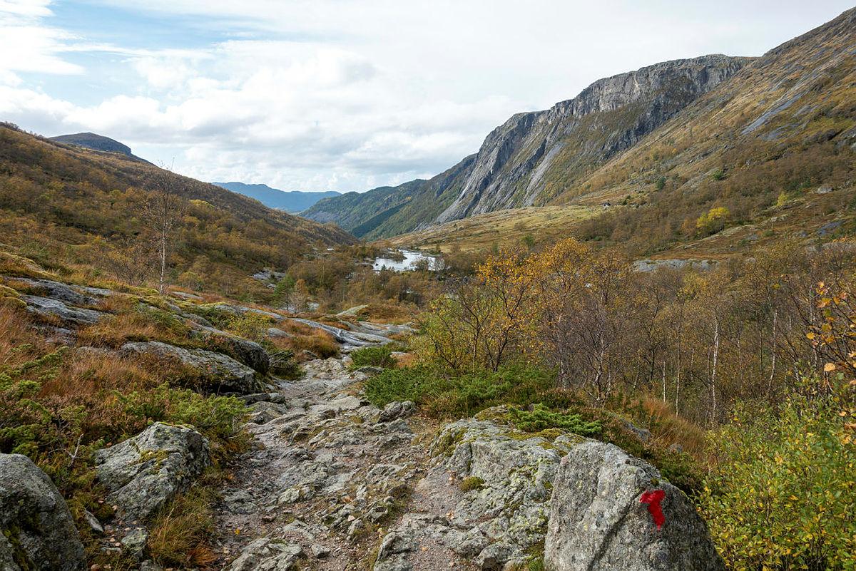 Bilder fra grunnleggende turlederkurs i Viglesdalen, høst 2021.