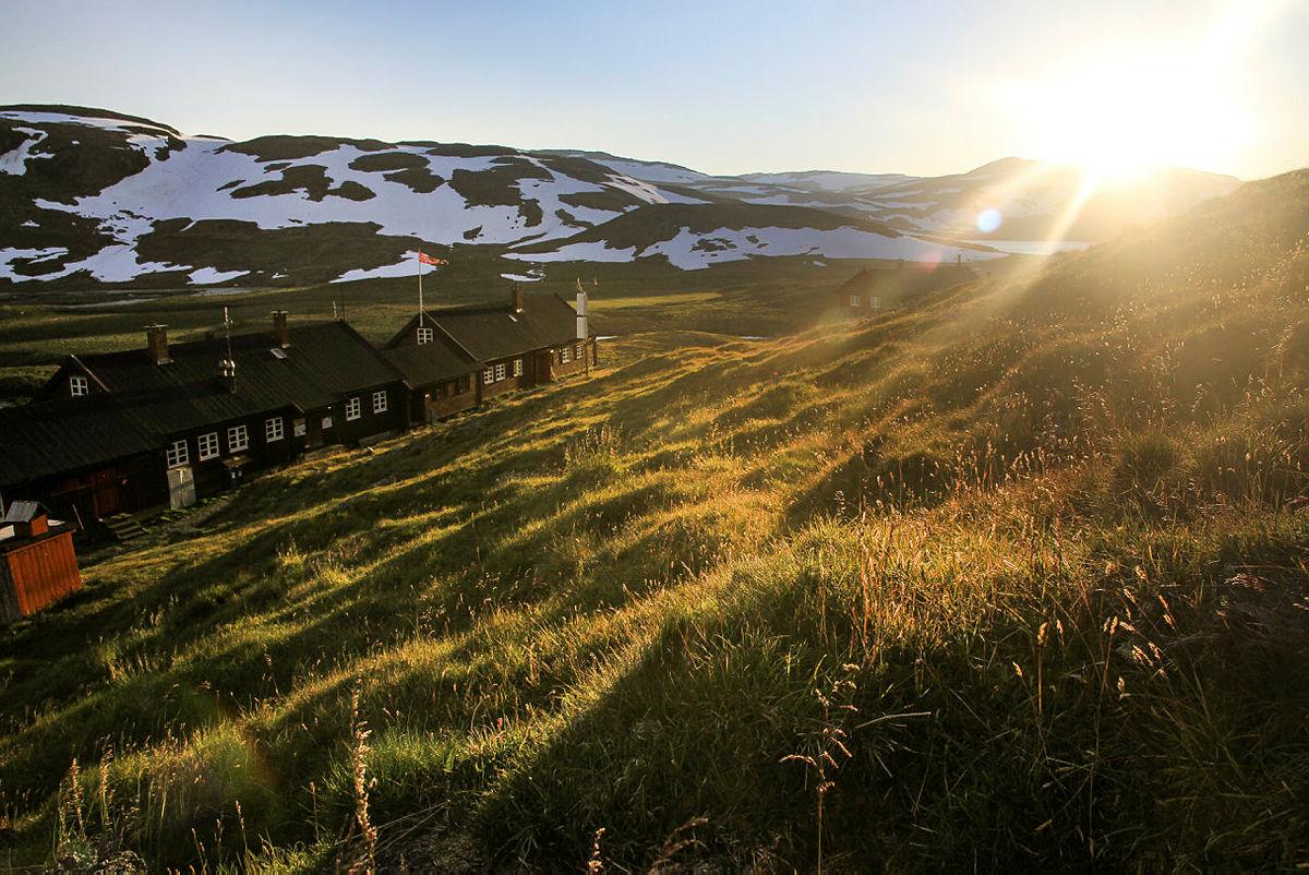 Uke 31: Føremelding for Hardangervidda