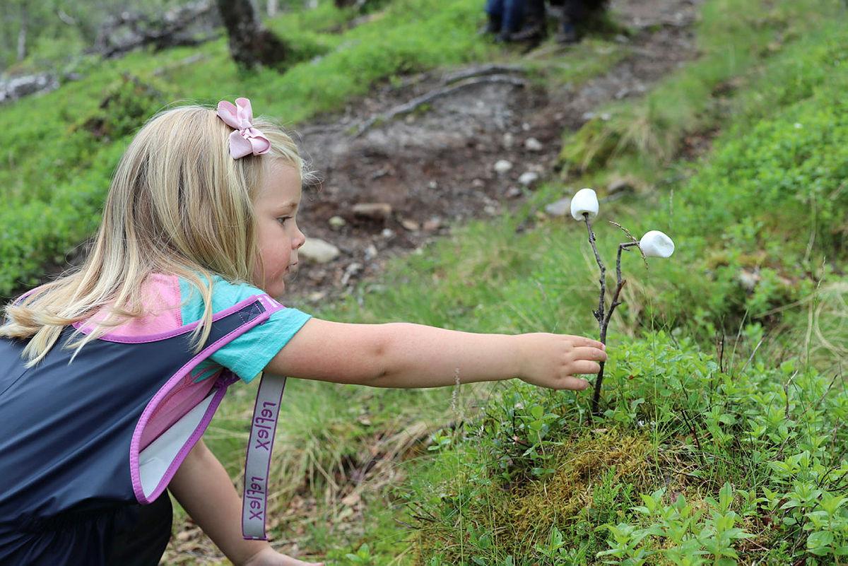 Marshmallowsjakt i naturen vekker garantert turmotivasjonen hos barna.