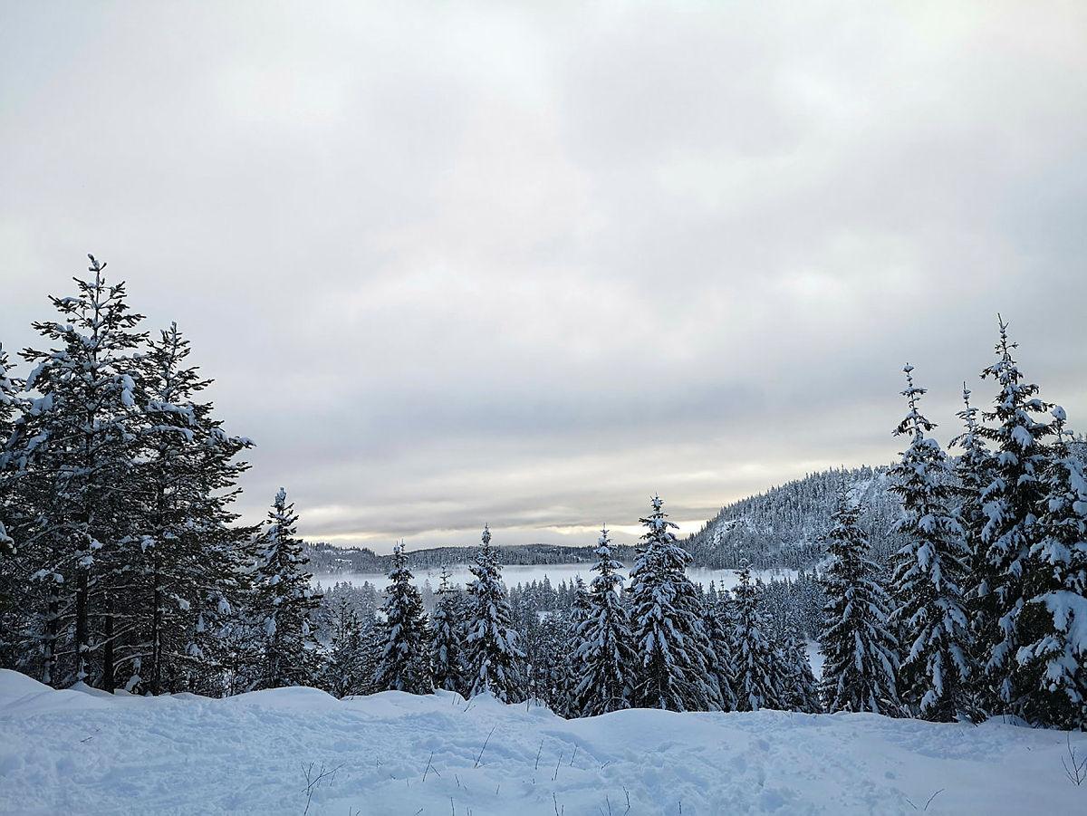 Utsikten fra Fugleleiken.