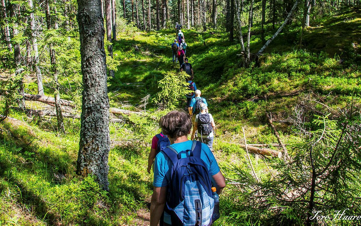 Turgruppa ut på tur Eiker på tur til Hoensvannet i Øvre Eiker.