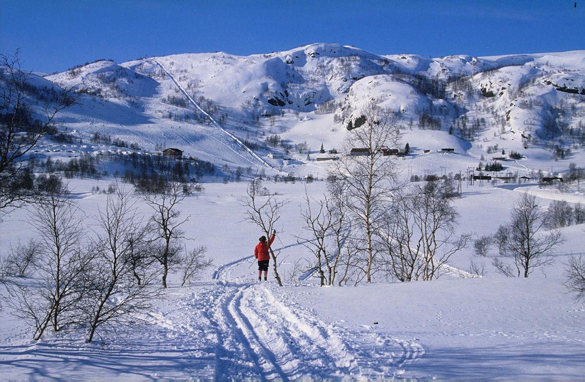 Ådneram er et populært utfartsområde særlig om vinteren.