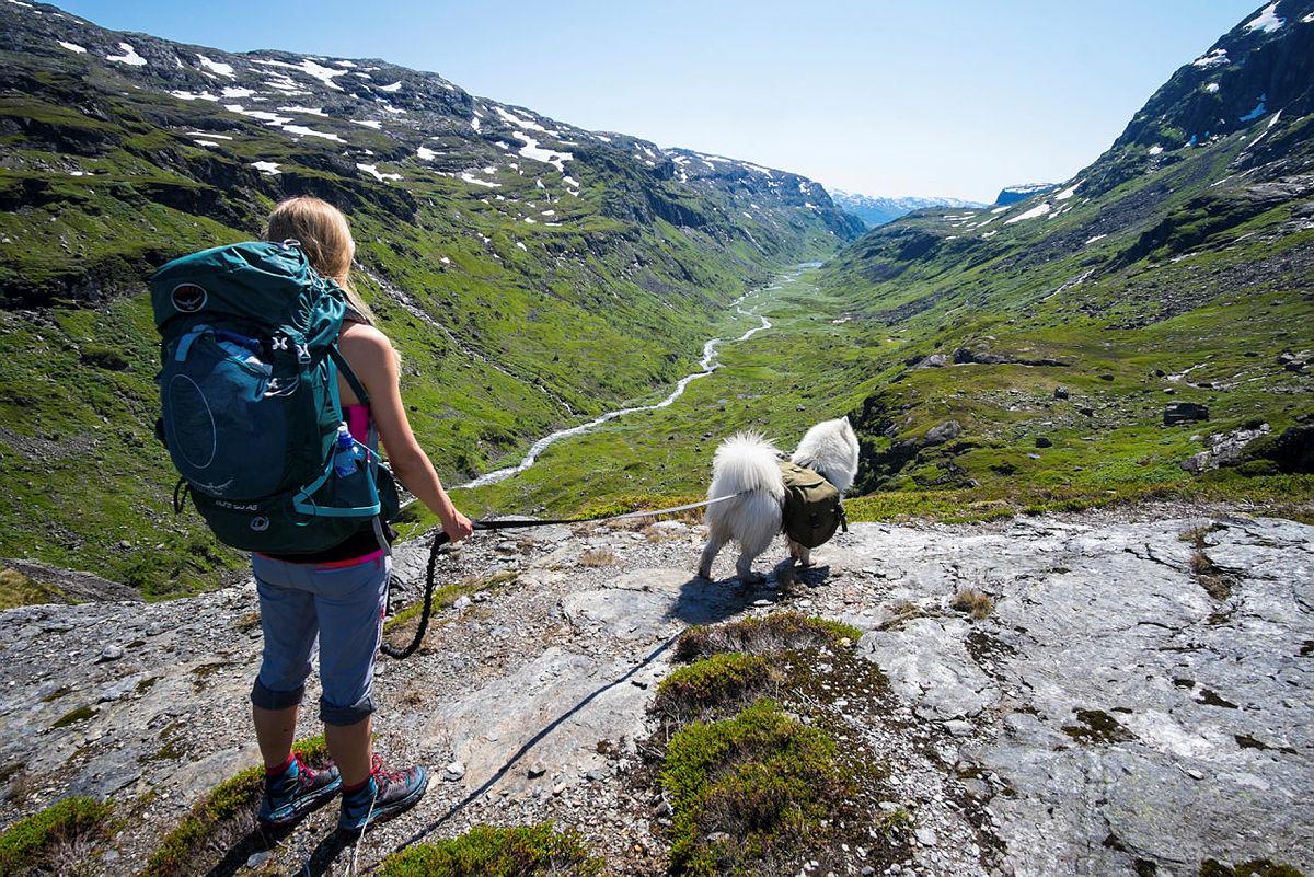 VAKKERT: Ruta mellom Haukeliseter og Kvanndalen er én av de lengste og flotteste turene i hele Ryfylke.